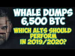 Whale Dumps 6,500 Bitcoin - Which Alt Coins Should Perform in 2019/2020 and When?