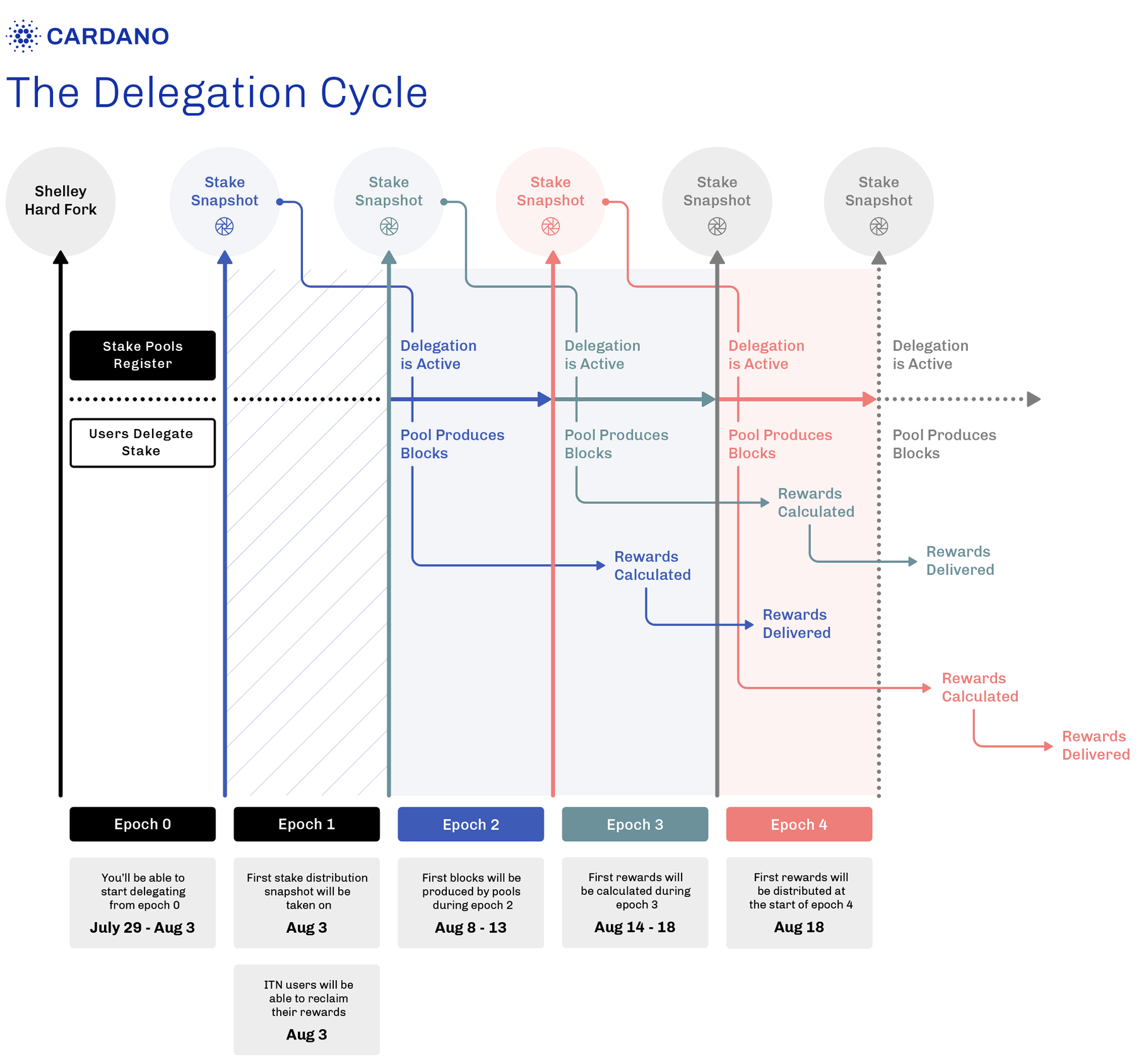 cardano delegation cycle