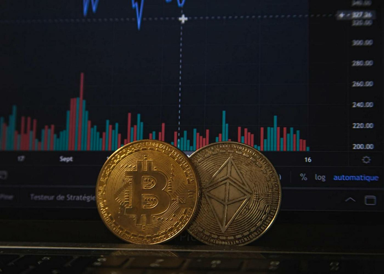 Thriving Bitcoin And Ethereum In November 2020